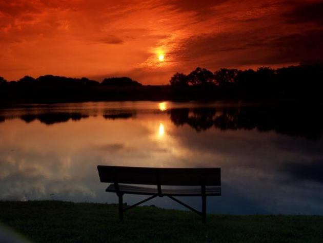 portfolio_sunsetfl_459181